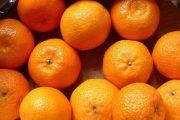 أسعار الأسواق الممتازة العالمية تقض مضجع مصدري ''الكليمانتين'' المغربي