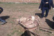 الرحامنة.. ضبط شاحنات تنقل الدجاج الميت إلى سوق أسبوعي