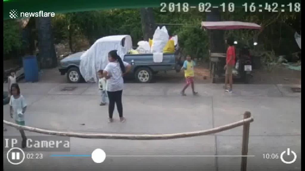 بالفيديو.. الألطاف الإلهية تنقذ طفلا من موت محقق بعد سقوط نخلة بجواره!!