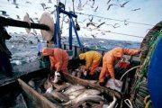 وزراء الصيد الأوروبيون يعلنون بدء المفاوضات حول الاتفاقية مع المغرب