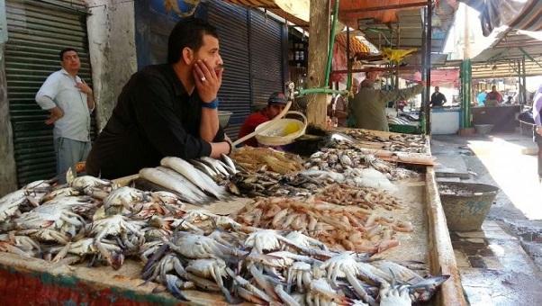 أسعار الأسماك تلتهب بعد تراجع كمياتها في الأسواق