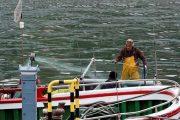 الاتحاد الأوروبي يعطي الضوء الأخضر للتفاوض حول اتفاقية الصيد مع المغرب