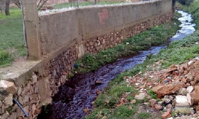 جماعة بني عمارت تشتكي تلوث مياهها بسبب معصرة للزيتون