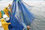 المفوضية الأوربية تتجه لتجديد اتفاق الصيد البحري يشمل الصحراء