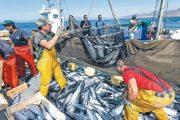 قرار المفوضية الأوروبية حول اتفاقية الصيد يربك البوليساريو