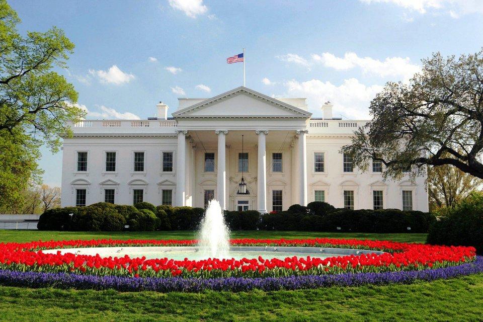 الولايات المتحدة الأمريكية: رجل يطلق النار على نفسه أمام البيت الأبيض