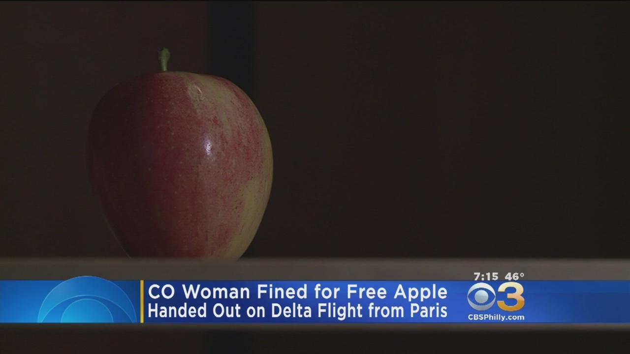 بالفيديو.. تغريم مسافرة بـ500 دولار...والسبب تفاحة!