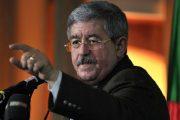 من جديد.. مسؤول جزائري يتطاول على المغرب