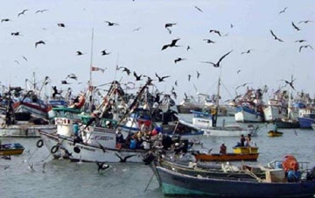 الاتحاد الأوروبي يفوض للجنة الأوروبية التفاوض حول اتفاق للصيد يشمل الصحراء