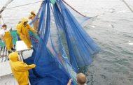 ضربة موجعة جديدة للبوليساريو.. مفاوضات تجديد اتفاق الصيد تنطلق سريعا