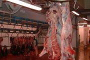 هذه حقيقة الاستغناء عن الأطباء المكلفين بمراقبة اللحوم
