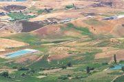 سم قاتل مجهول المصدر يستعمل في حقول منطقة غفساي بإقليم تاونات
