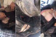 النيابة العامة تدخل على خط فيديو الشخص المريض بسيدي سليمان
