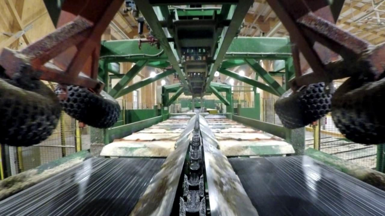 بالفيديو.. لقطات من داخل أكبر منشار خشب فى العالم تظهر كيف يعمل