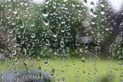طقس نهاية الأسبوع.. كتل ضبابية وأمطار خفيفة ورعد بعدة مناطق