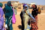 مطالب أوروبية بإنهاء محنة النساء المحتجزات في مخيمات تندوف