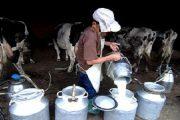 أخبار عن دعوة لتنظيم مسيرة للفلاحين تستفز المقاطعين لحليب