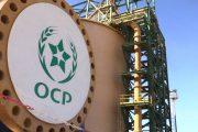 OCP يحوز 20 في المائة من رأسمال شركة اسبانية عالمية