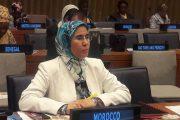 المغرب يمثل دول شمال إفريقيا بمجلس صندوق البيئة العالمي
