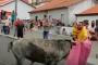 بالفيديو... رجل يصارع الثيران وهو يحمل طفلا صغيرا