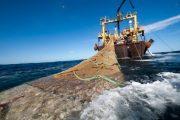 المغرب والاتحاد الأوروبي يتوافقان حول مضمون اتفاق الصيد البحري المقبل