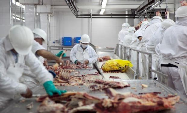 قريبا... مواد ذهنية حيوانية أرجنتينية على موائد المغاربة