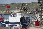 إسبانيا تتوقع توصل المغرب والاتحاد الأوروبي لاتفاق الصيد في الأيام المقبلة