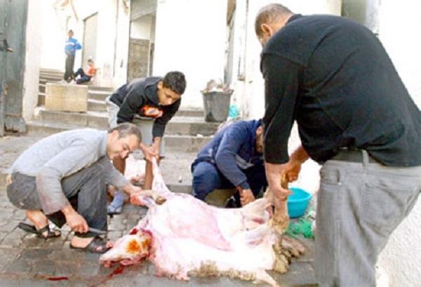 لتزامنه مع العطلة.. مغاربة الخارج يفضلون قضاء عيد الأضحى داخل الوطن