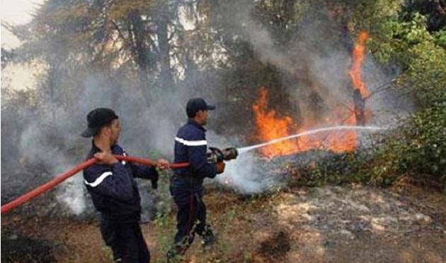 الحرائق تهدد غابات المغرب والسلطات تحذر المواطنين من التهور