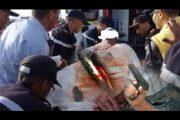 إفران.. التحقيق في قتل شرطي لرئيسه بسلاحه الوظيفي