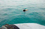 صعوبات في اتتشال جثة شاب من المياه الجزائرية بعد غرقه في السعدية
