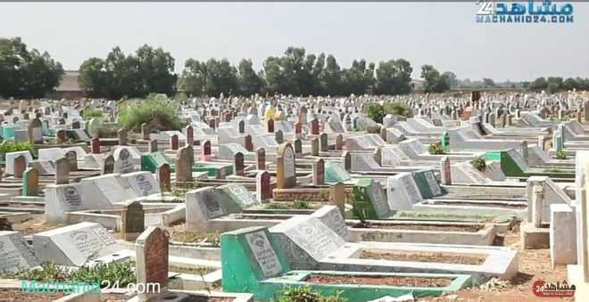 بالفيديو: حسن عزيز يكشف عدد الجثث بـ