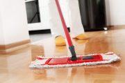 الكندي لـ''مشاهد24'': النقابات مطالبة بمصاحبة العمال المنزليين للاستفادة من القانون
