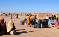 مناضل صحراوي..