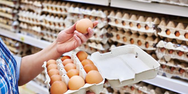 المغرب ينتج ما يفوق 5 ملايير وحدة من البيض