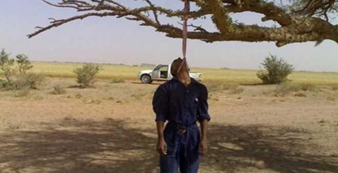 شاب يشنق نفسه بحبل معلق على شجرة