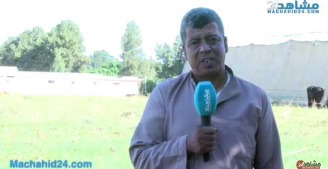 بالفيديو: فلاحو شراردة بن احسن يعانون فساد المحصول وضعف الطلب مقابل هزالة الأسعار