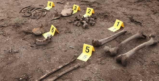 العثور على بقايا عظام بشرية قرب شاطئ بالوما