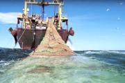 مجلس الاتحاد الأوروبي يصادق على اتفاق الصيد البحري مع المغرب