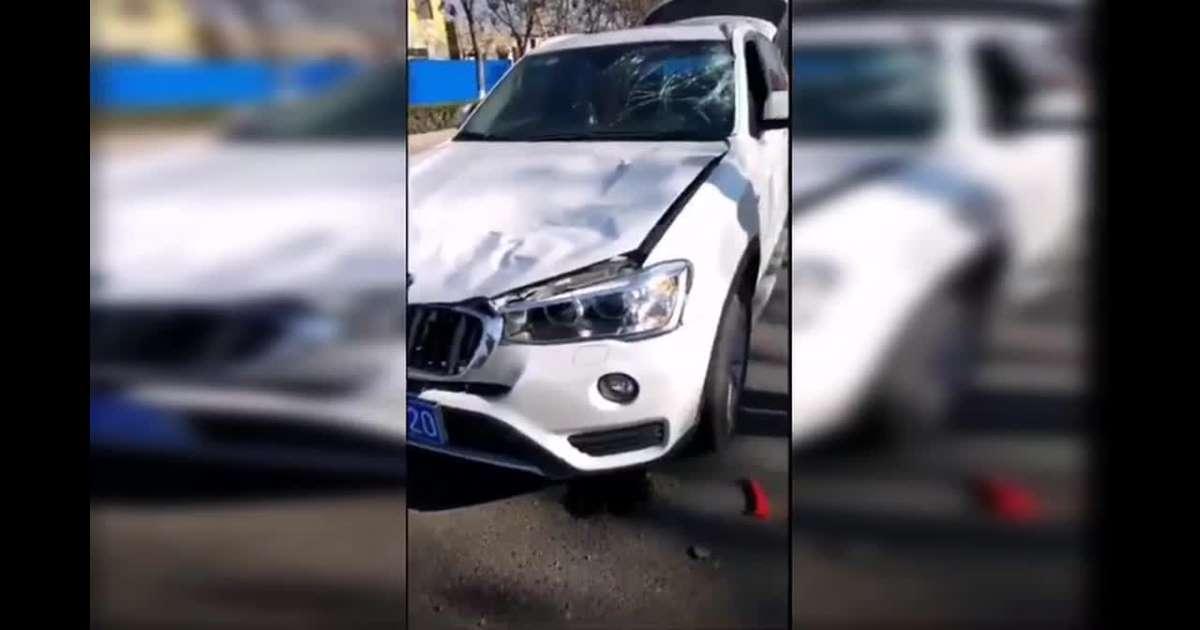 بالفيديو.. حصان هارب يصطدم بسيارة فارهة!!