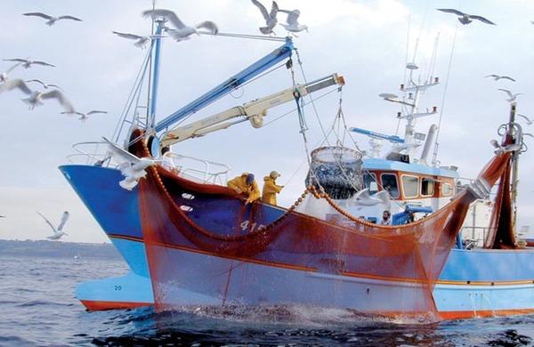 لجنة الميزانيات بالبرلمان الأوروبي تصوت لفائدة تبني اتفاق الصيد البحري