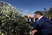 مخطط المغرب الأخضر ..أخنوش يعطي انطلاقة أشغال مشروع للري