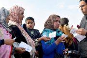 مغربيات يتسابقن للتسجيل من أجل السفر لجني الفراولة بإسبانيا