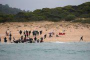 المنظمة الدولية للهجرة تكشف عن حصيلة قياسية
