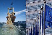 سياسيون صحراويون يدعون إلى تجديد الاتفاق الفلاحي والصيد البحري