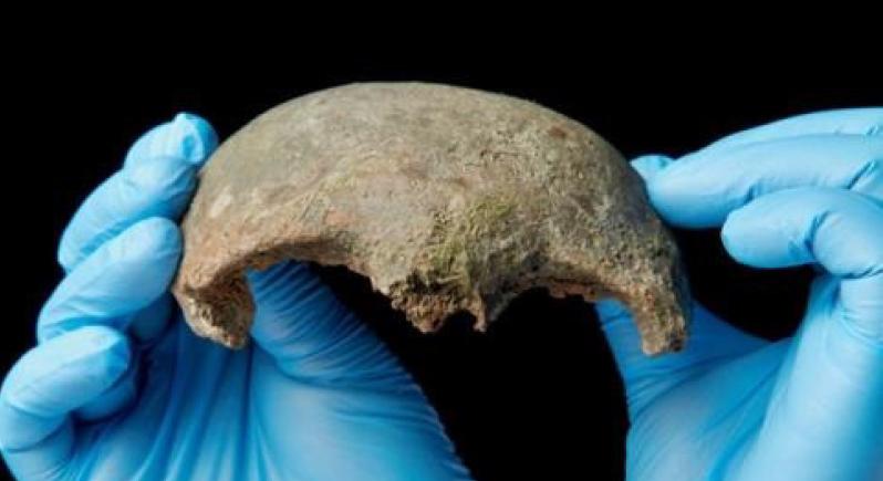 بريطانيا: العثور على جمجمة لشاب عاش قبل أكثر من 5600 سنة