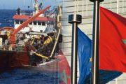 غدا الثلاثاء.. البرلمان الأوروبي يصوت على اتفاق الصيد مع المغرب