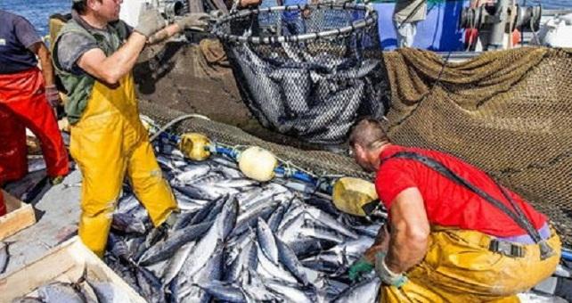 إسبانيا تأمل في عودة أسطولها للصيد بالمياه المغربية قبل الصيف