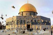 اللجنة الدولية لدعم الشعب الفلسطيني تشيد بمبادرة الملك تجاه المسجد