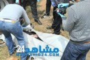 نهشت الكلاب معظم أجزائها.. العثور على جثة بالطريق قرب سيدي مومن (+ الصور)